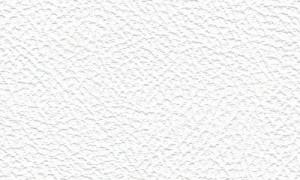 07 White